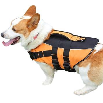 JoyDaog Chaleco salvavidas para perros pequeños, para natación, flotación de seguridad gruesa: Amazon.es: Productos para mascotas
