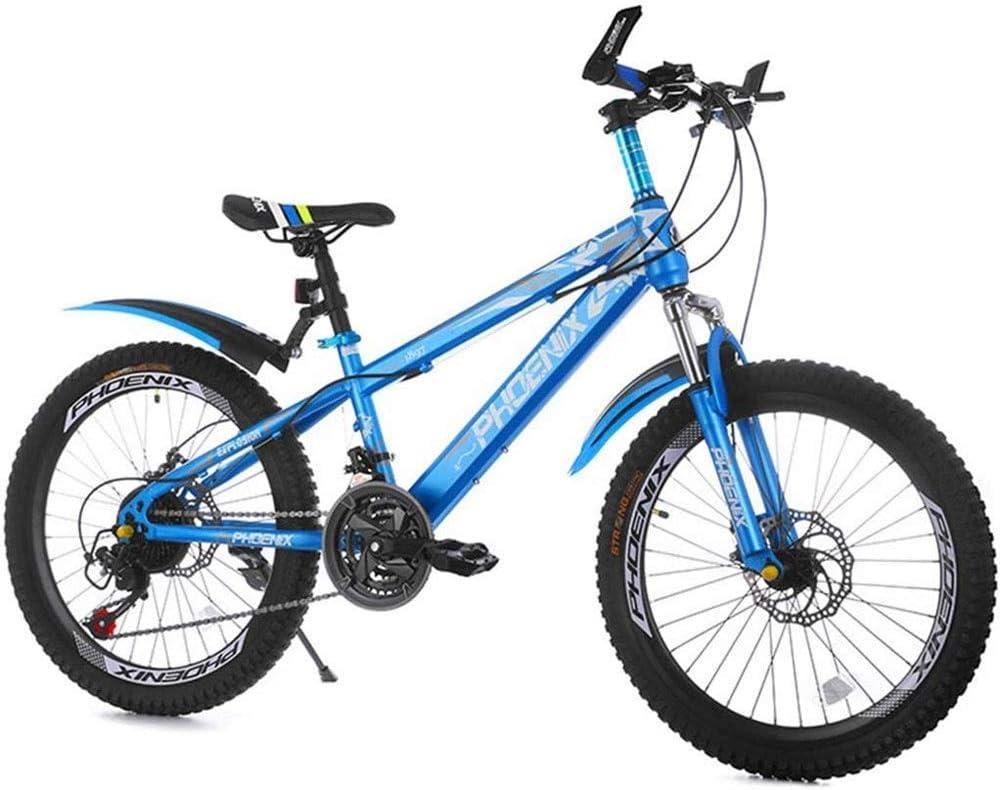 DCC Recorrido de la Bicicleta de montañismo Bicicleta de los niños Ejercicio Bike Park Road Bike Boy 22 Pulgadas y Velocidad Ajustable Chica de Bicicletas