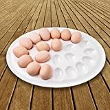 Deviled Egg Plate,Melamine XL Refrigerator Egg Tray Deviled Egg Dish Storage Holder for 22pcs Eggs Shatter-proof 15inch by Mobaa