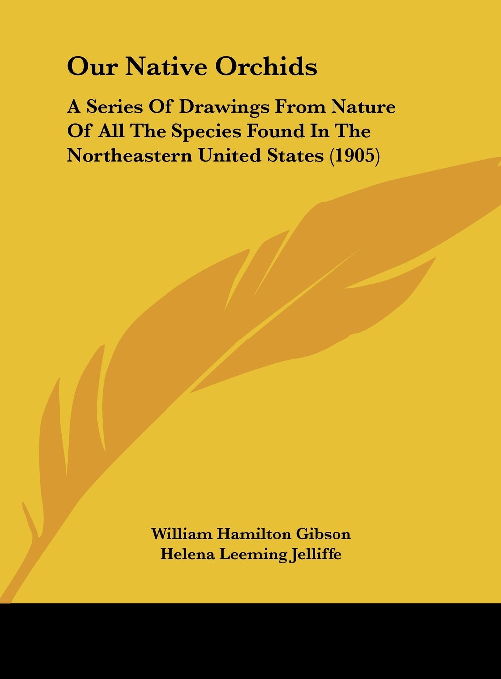 Read Online Our Native Orchids: A Series Of Drawings From Nature Of All The Species Found In The Northeastern United States (1905) ebook