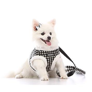 ZackX - Arnés anti tirones para perro con correa, arnés con ...