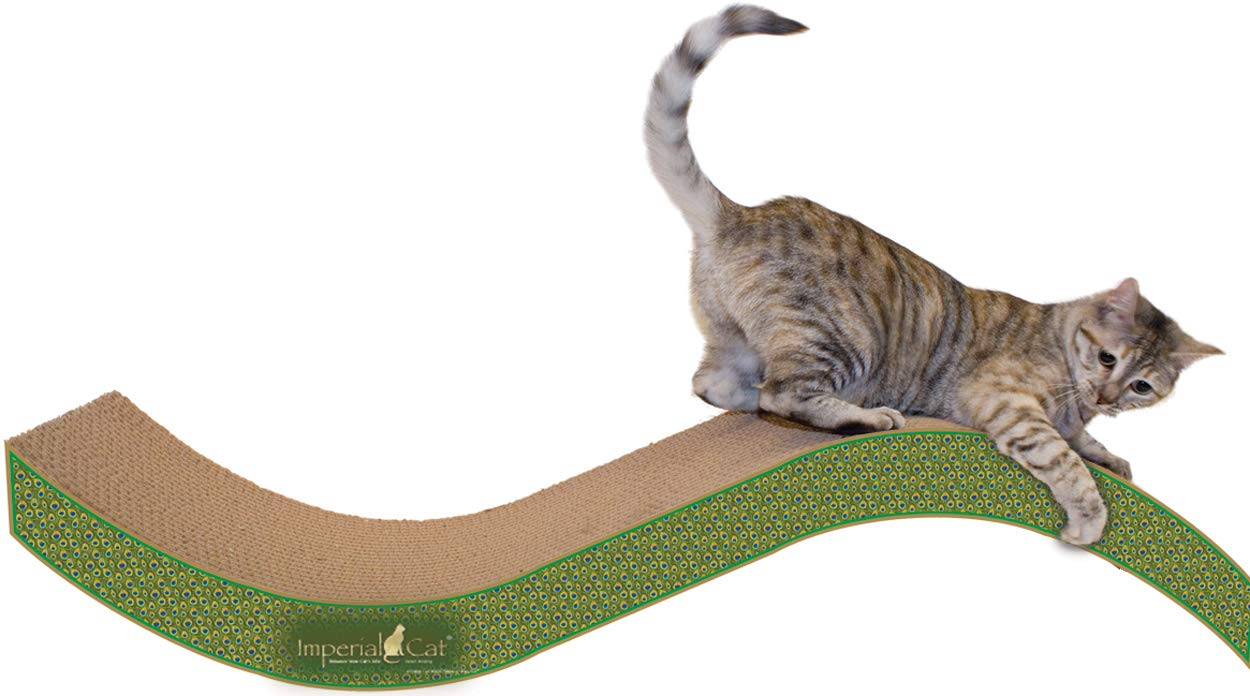 Imperial Cat Purrfect Stretch Scratch 'n Shape, Giant, Paisley by Imperial Cat