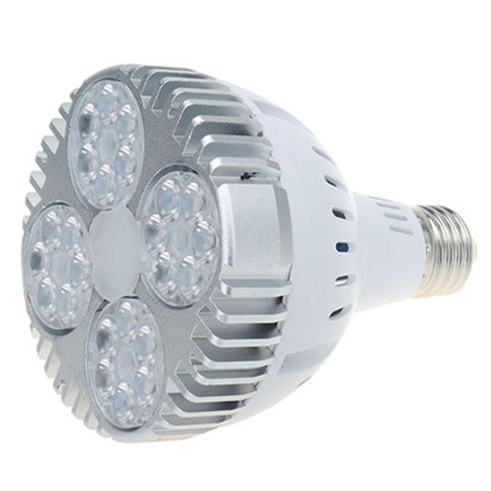 ルミPAR30(ホワイト B01N3QXWI0&ブルー)業務用LEDライト B01N3QXWI0 ハィクリアーホワイト ハィクリアーホワイト, インスピレーション:0c3298e9 --- ijpba.info