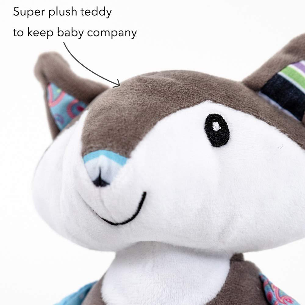 Nuby Little Fox Decke und Teddy