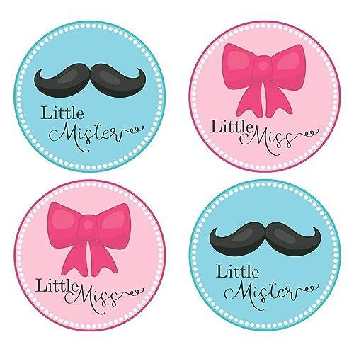 Gender Reveal Decor Gender Reveal Party Little Mr or Little Miss Gender Reveal