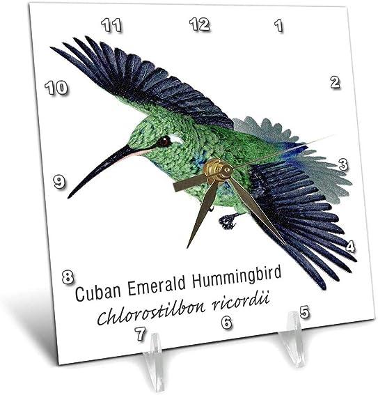 3dRose dc_37142_1 Cuban Emerald Hummingbird Desk Clock, 6 by 6
