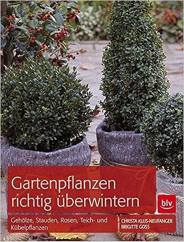 Gartenpflanzen Richtig Uberwintern Geholze Stauden Rosen Teich