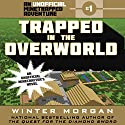Trapped in the Overworld Audiobook by Winter Morgan Narrated by Nicol Zanzarella
