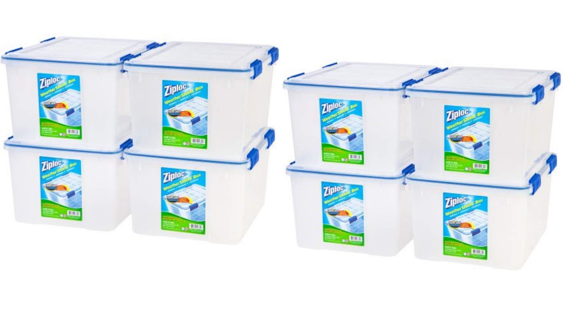 Ziploc 44 Qt./11 Gal. WeatherShield Storage Box, Clear/Pack of 8