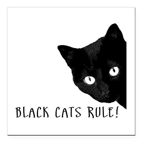 Amazon.com: CafePress gatos negros regla cuadrado de imán ...