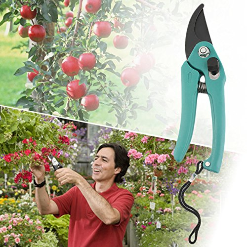 Gardening Scissors - 1 Piece Pruning Shear Snip Tool Pruner Scissors Branch Cutter Lock Spring Hardened Material Sharp Blade (Gardeners Branch Tools)