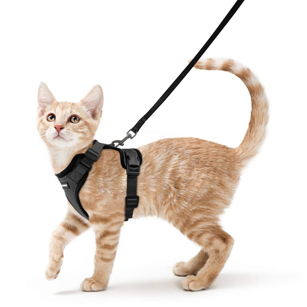 Cat Harness and Leash Set for Walking, Escape Proof with 59 Inches Leash - Adjustable Soft Vest Harnesses for Small Medium Cats, Cat Leash Harness with Reflective Strips & 1 Metal Leash Ring, Black by Rabbitgoo