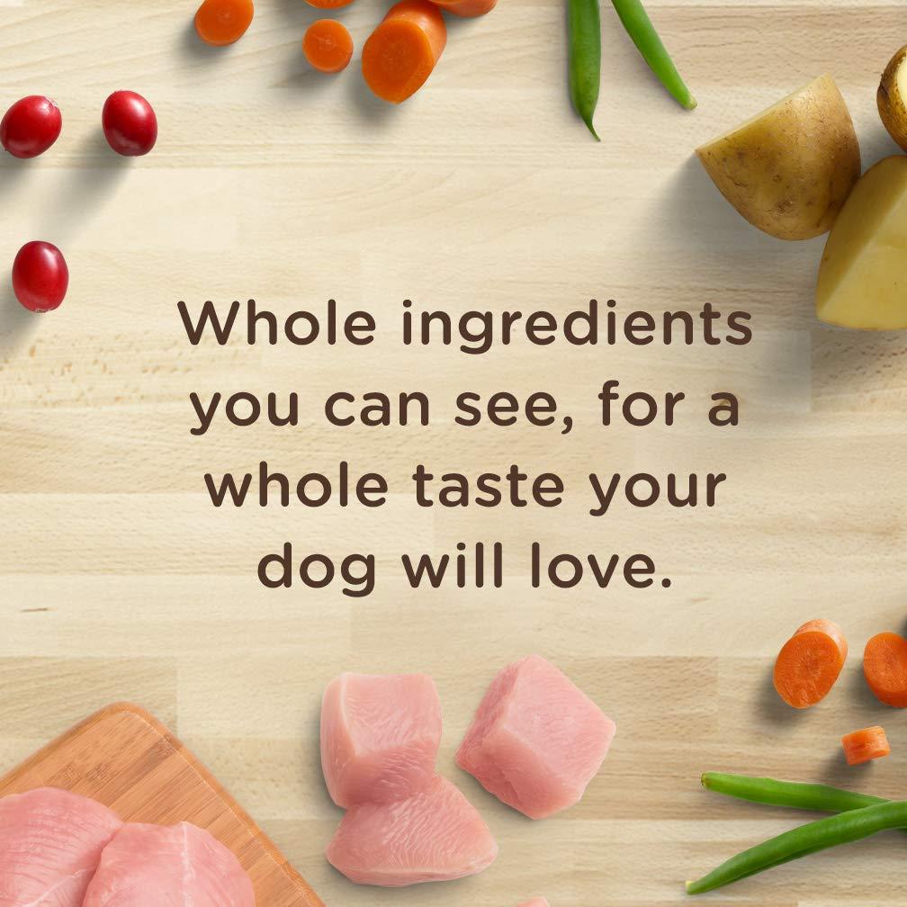 Rachael Ray Nutrish Dish Stews Natural Grain Free Wet Dog Food
