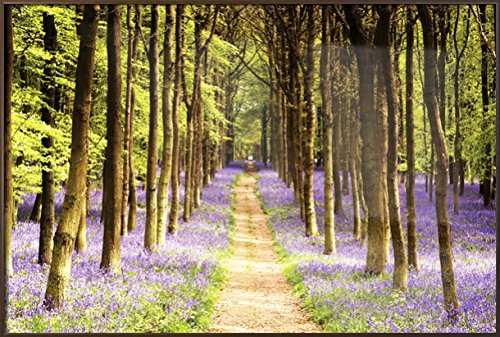 Woodland Path - Framed Nature Poster / Print Trees & Lavender By Stop Online