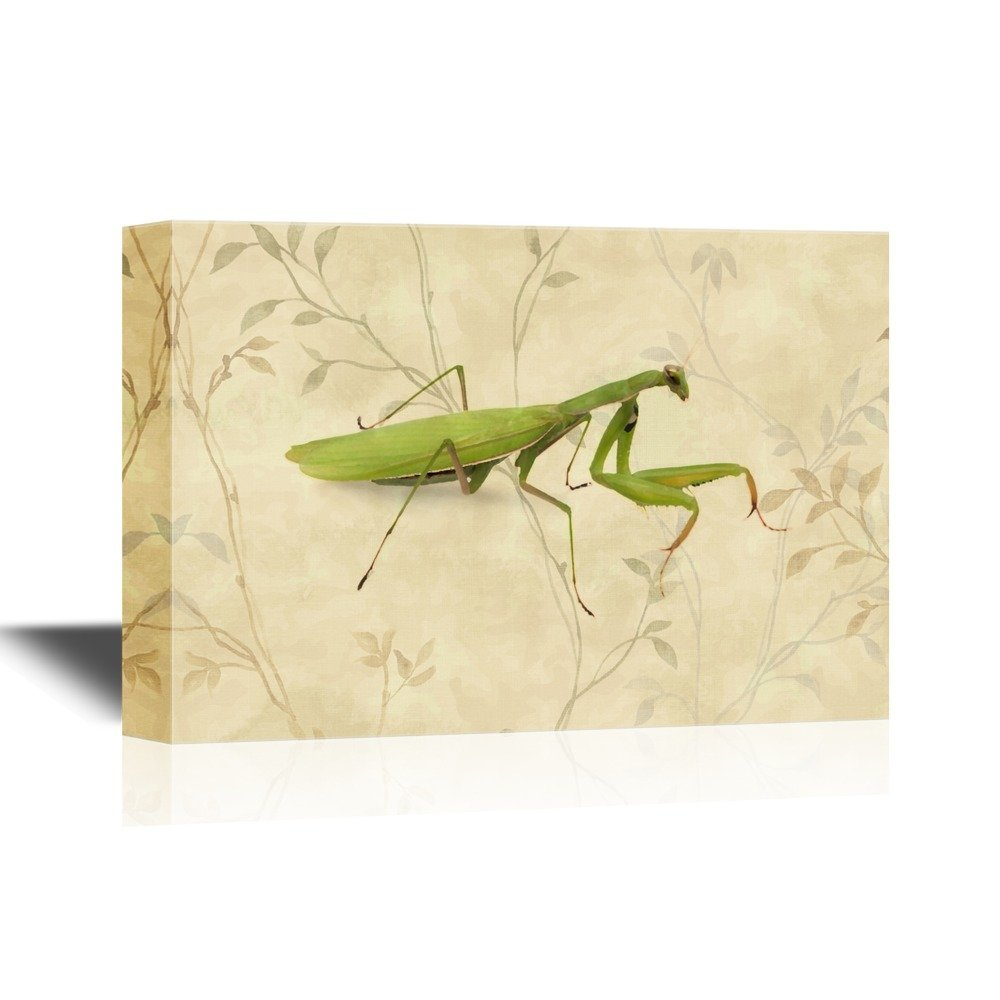 Insects Artwork Series A Praying Mantis on Floral Background Gallery ...