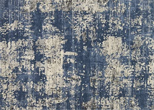Loloi Rugs, Emory Collection – Blue Granite Area Rug, 1 6 x 1 6