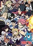 Fairy Tail 60638 Wall Scroll, Poster, Multi-Colored