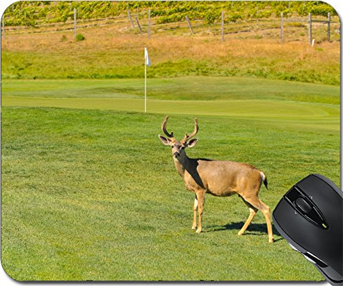 MSD Natural Rubber Mousepad Mouse Pads/Mat design: 30451928 A buck deer is on a golf course near the golf green - Carmel Valley Ranch