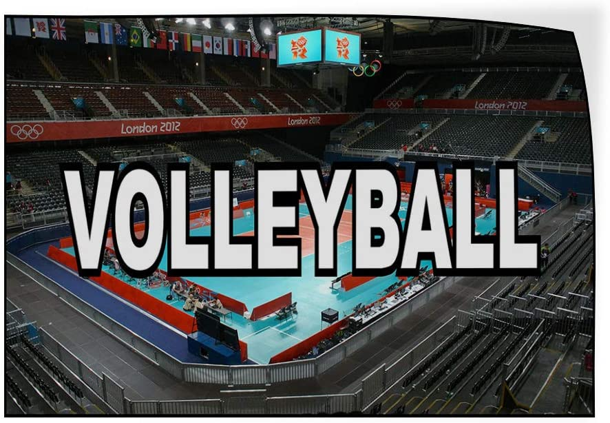 Decal Sticker Multiple Sizes Volleyball Grey Red White Blue Sports Volleyball Outdoor Store Sign Grey 27inx18in Set of 5