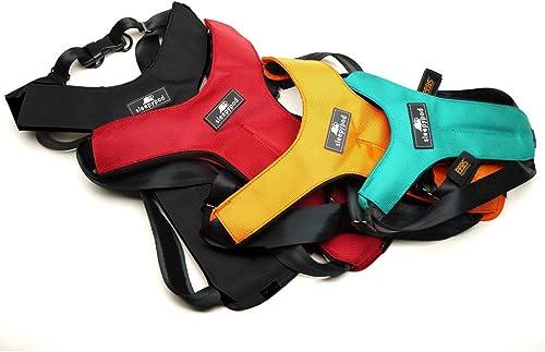 Sleepypod-ClickIt-Sport-Crash-Tested-Car-Safety-Dog-Harness