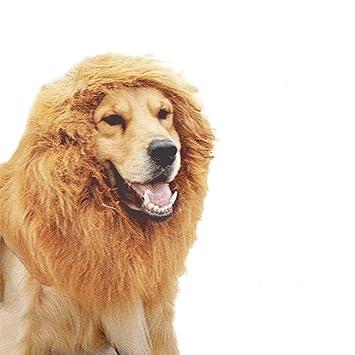 UEETEK Peluca León Melena de Perro Mascota para Halloween Fiesta Disfraces Traje