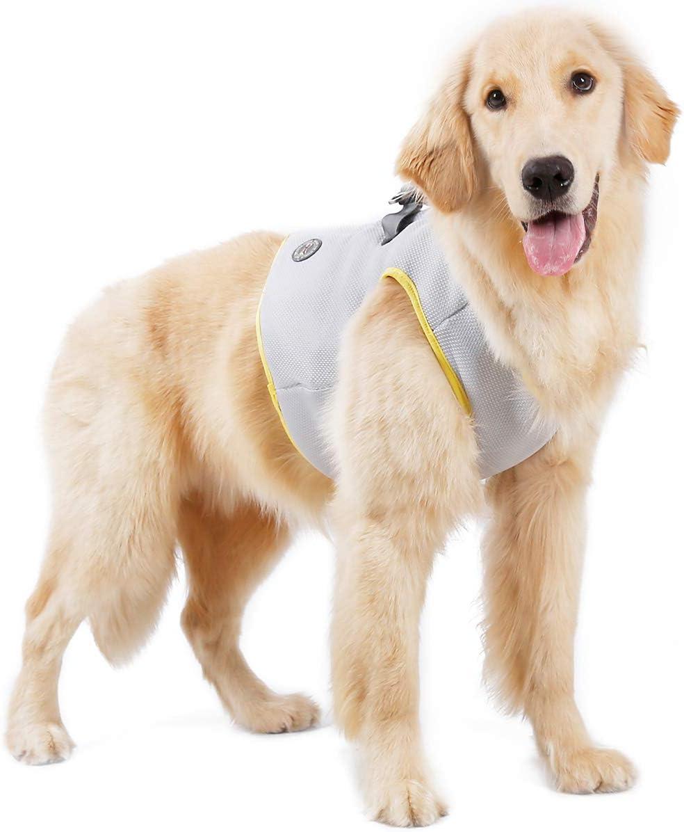 Tineer Pet Refrescante Arnés Malla de Verano Perro para Caminar ...