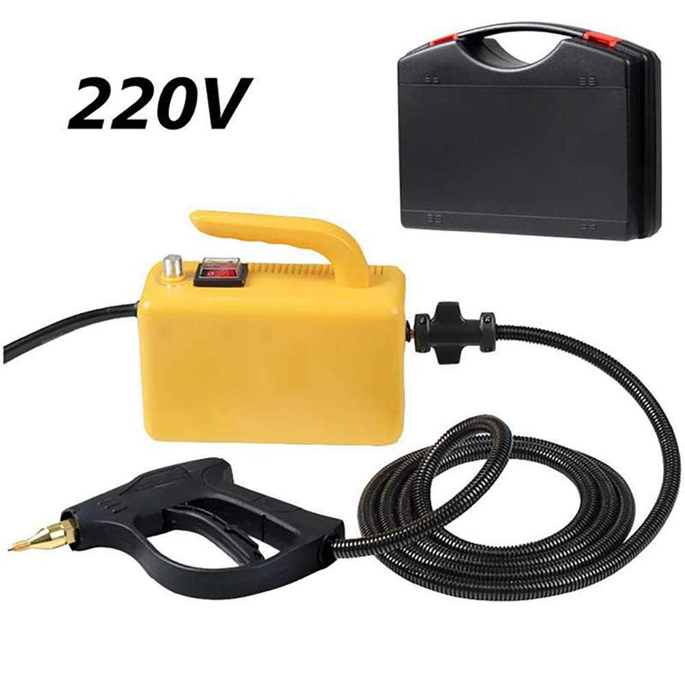 Basic Model, Black CGOLDENWALL High Temperature High Pressure Steam Cleaner Portable Cleaning Machine Automatic Pumping 2600W/for Cleaning Kitchen Car 220V