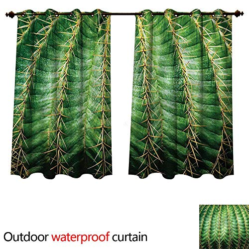 cobeDecor Cactus Outdoor Curtain for Patio Desert Flower Zoom Photo W63 x L63(160cm x 160cm)