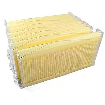 Juego de 7 marcos para colmenas de miel de flujo automático, para apicultura, miel, abeja, colmena de abeja: Amazon.es: Productos para mascotas