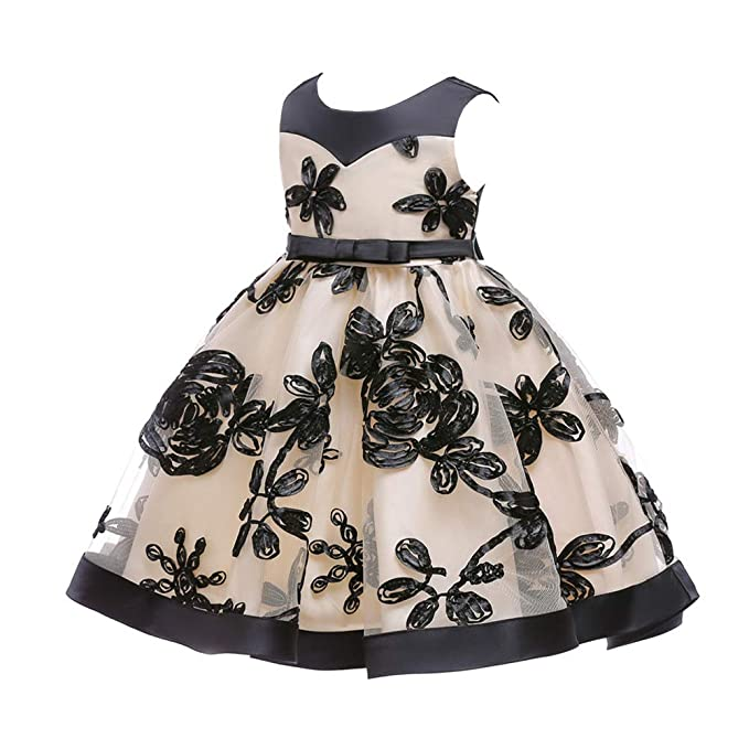 94ebc14fb38 Amazon.com  0-24 Months Baby Girls Flower Dress Wedding and ...