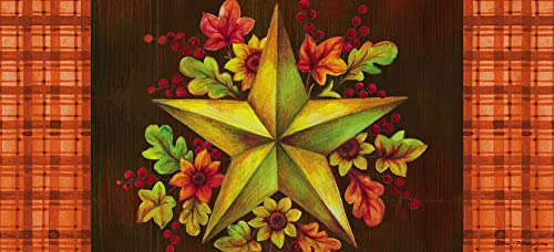 Evergreen Fall Barn Star Decorative Mat Insert, 10 x 22 inches