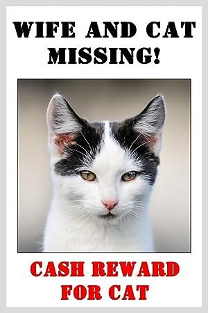 Funny negro y gato blanco Imán para nevera - esposa y gato Missing. Regalo perfecto de Navidad: Amazon.es: Hogar