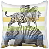 Throw Pillow Cover Square 18x18 Inches Boy Animals Hand Drawn Artwork Graphic Wild Africa Alligator Beautiful Bird Color Polyester Decor Hidden Zipper Print On Pillowcases