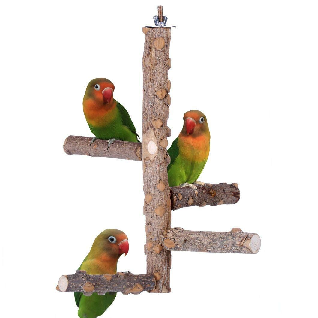 Ewook Bird Cage Perch, Birdcage Stands, Parrot Cage Top Play Stands Wooden Branches for Conure Parakeet Budgie by Ewook