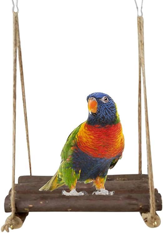 Yunt pájaro madera Balancín Papagayo juguete Barra de asiento para loros Ninfa loros agapornis: Amazon.es: Hogar