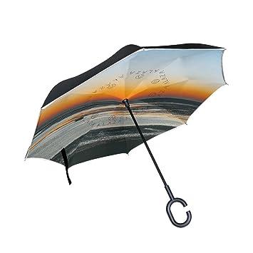 OREZI Paraguas reversible de doble capa invertido, plegable, protección contra el viento, gran