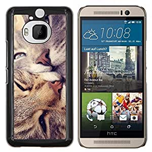 KLONGSHOP // Cubierta de piel con cierre a presión Shell trasero duro de goma Protección Caso - Americano de Pelo Corto Rizo Love Cats beso - HTC One M9Plus M9+ M9 Plus //
