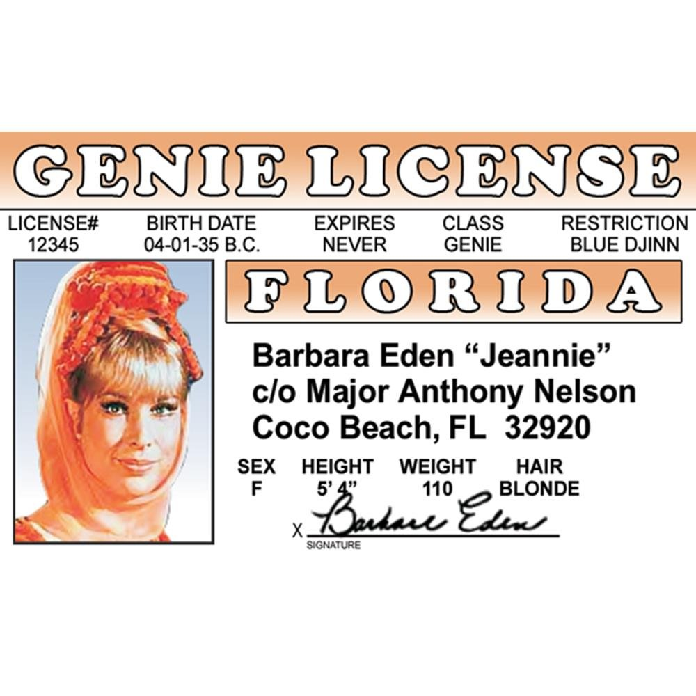 restriction b on drivers license florida