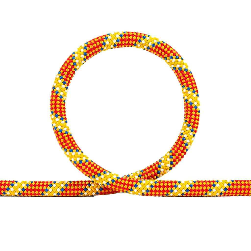 ZHWNGXO クライミングロープ、ハイキングやスポーツ10メートル/ 20メートル/ 30メートル/ 40メートル/ 50メートル/ 60メートル/ 70メートル/ 80メートル/ 90メートル/ 100メートルオレンジのため耐久性スタティックロープライトウェイト/ソフト10ミリメートルポリエステル (Color : オレンジ, Size : 40m) オレンジ 40m