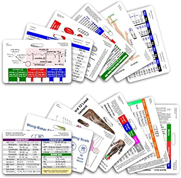 Complete Nurse RN CNA NA Horizontal Badge Card Set - 13 Cards