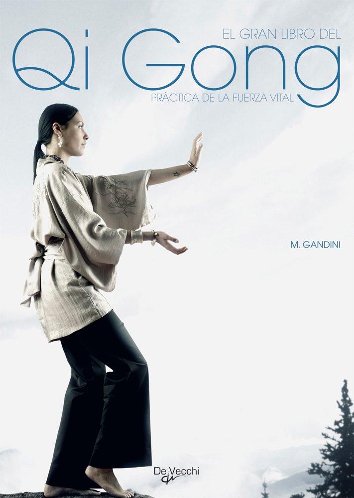 El Gran Libro del qhi Gong: MAURIZIO GANDINI : 9788431537005 ...