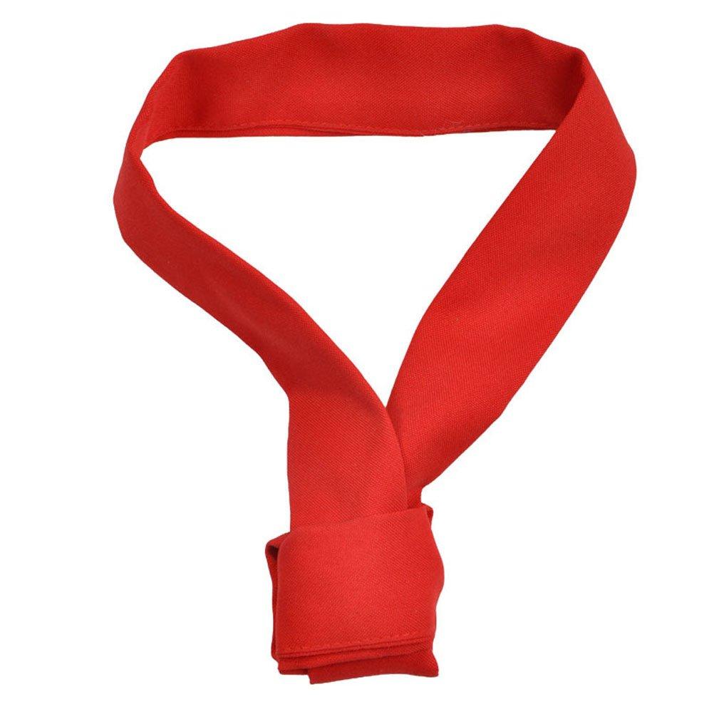 Nanxson(TM) Restaurant Unisex Bow Tie Necktie Scarf CF9024 (red)
