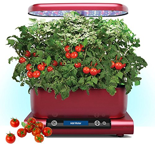 Harvest by Aerogarden Premium Red Indoor Garden with Cherry Tomato Kit (See other available colors and options) by AeroGrow
