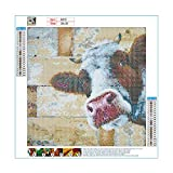 Fawankiss 5D Cow Diamond Painting Kits for