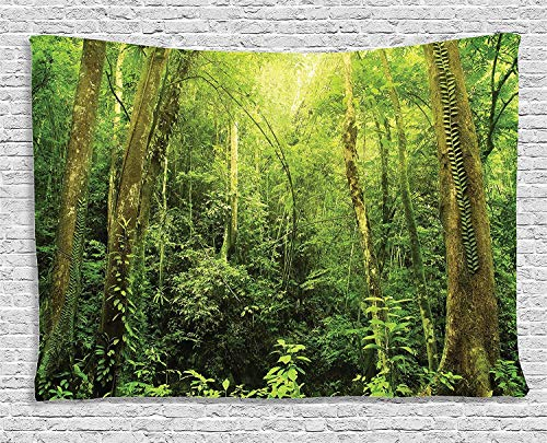 CosyBright Rainforest Decorations Tapestry, Tropical Rainforest Landscape Malaysia Asia Green Tree Trunks Uncultivated Wood Bedroom Living Room Dorm Accessories Wall Hanging Tapestry, 60x90 Inches