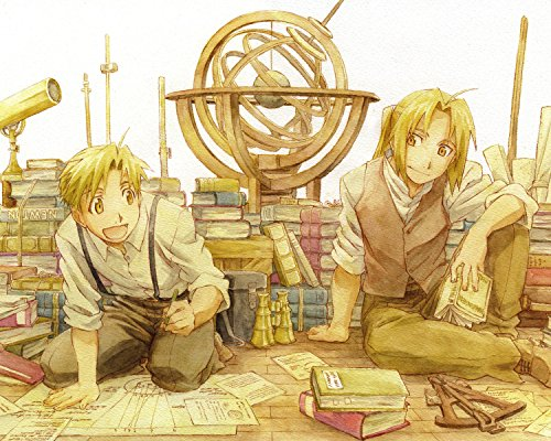 Fullmetal Alchemist Poster Anime Edward Alphonse Japan Wall Art Brotherhood 16x20 (Full Metal Alchemist Poster)