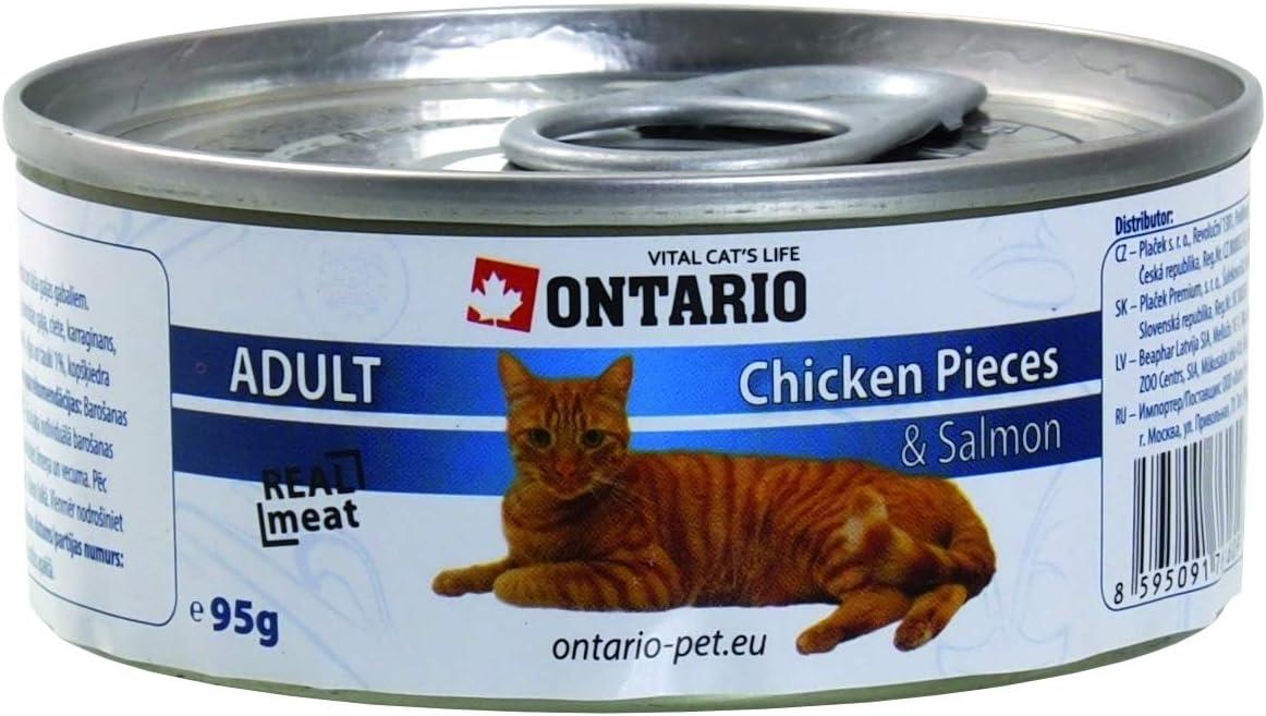Ontario Cat Alimento húmedo Gatos Adultos - Trozos de Pollo + ...