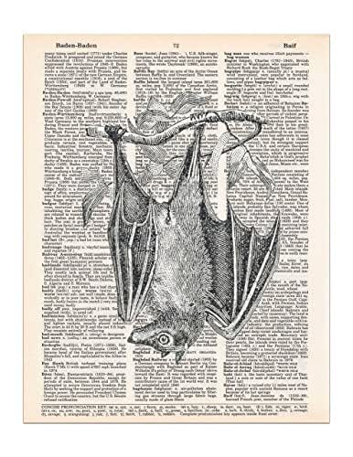 Hanging Bat Dictionary Page Print, Halloween Gothic Decor, 8x11 UNFRAMED