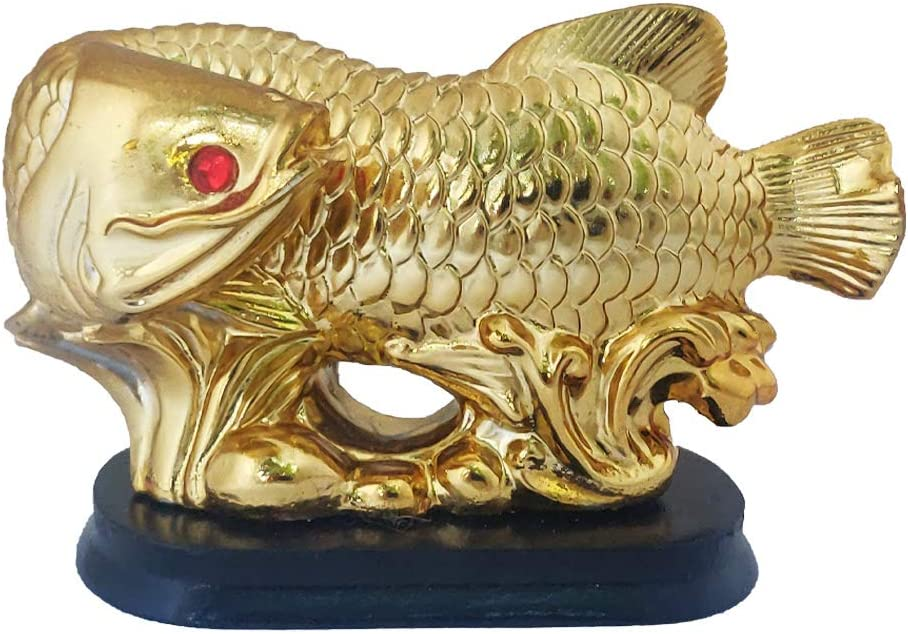 Divya Mantra Feng Shui Prosperity Arowana Dragon Fish with Stand Potent Energizer of Chi Wealth Indian Gift, Office Decor, Business, Home, Showpiece, Decorative, Item/Product-Money, Good Luck - Golden