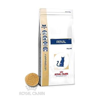 royal canin renal gatto  Royal Canin Cibo per gatti Renal: : Prodotti per animali ...